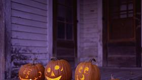 sns-halloween-jack-o-lanterns-pg-033 (1)