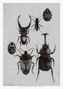KKCN11-PRT006-102_I-Love-Bugs